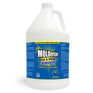molderizer Black Mold Guide... Everything You Need to Know About The Harmful Spores