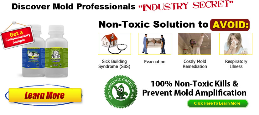 molderizer mold remediation products click Black Mold Guide... Everything You Need to Know About The Harmful Spores