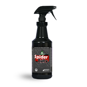 spider bully 32oz How to Kill Spiders – Guide to Keep Them Off Your House