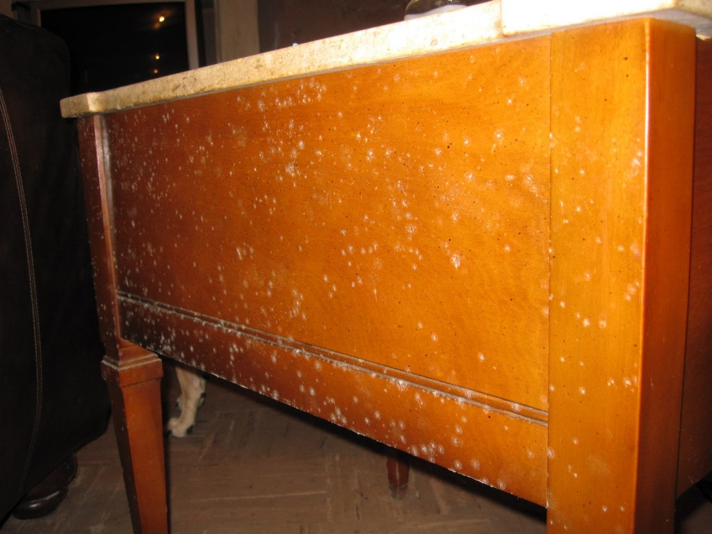 Amazing Photo Of Musty Smells Out Of Wooden Furniture Furthermore How To Remove  Mold With #