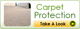 Carpet Protection